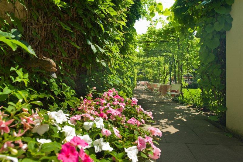 Garten6-klein